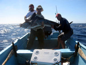 Catching a marlin in a panga is quite an experience!